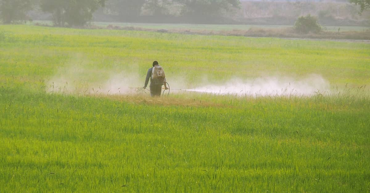 Were You Exposed to Paraquat on a Farm? | Whitley Law Firm